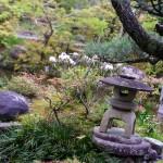 Garden near the temple