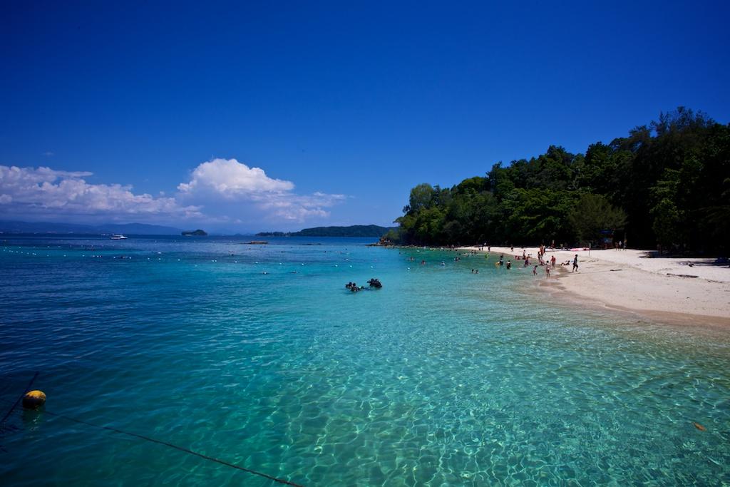 Image result for pulau sapi