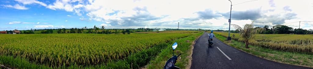 Bali_pan