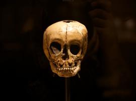 Pandonitravels-Museum-13
